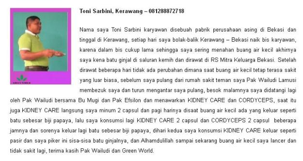 Testimoni-Kidney-Care-Capsule-For-Men